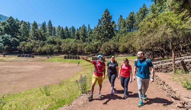 Rutas Turísticas  Rutas Turisticas 'Los tres sabores de las Medianías', premiada como la mejor ruta por Fitur