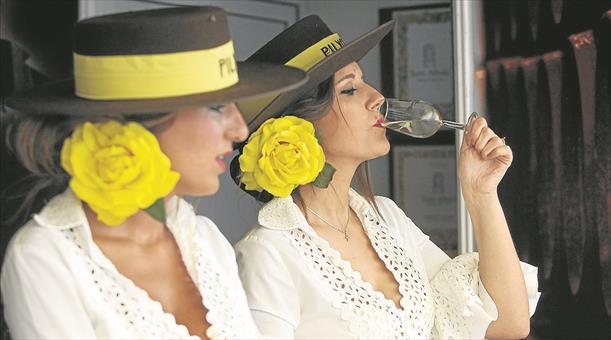 Vinos Vinos Cata del vino en Cabra