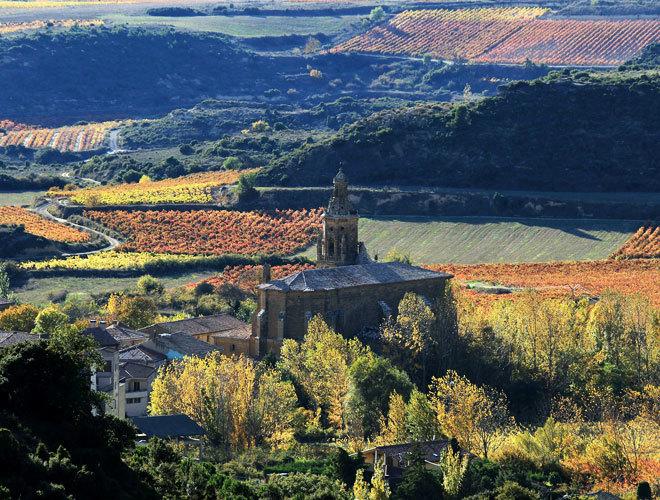 Vinos Vinos ¿A qué sabe el vino con más altura de La Rioja?